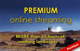 Subscribe to the PREMIUM STREAMING videos of Nature